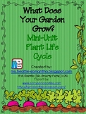 What Does Your Garden Grow? Mini Unit Plant Life Cycle