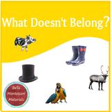 What Doesn't Belong?  Classification Shelf Activity