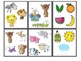 What Doesn't Belong Flash Cards; Language Therapy; Classroom Centers