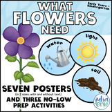 What Flowers Need (plants, flowers, spring, science)
