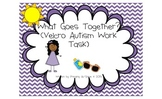 What Goes Together? An Autism Velcro Work Task