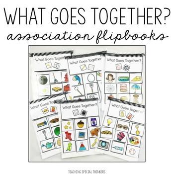 What Goes Together? Association Flipbooks