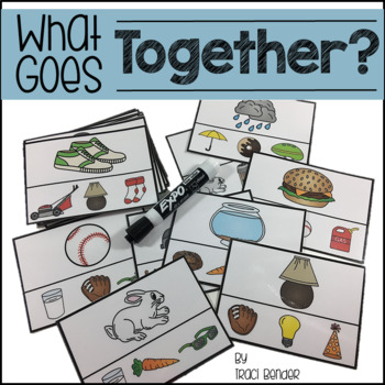What Goes Together? {Classifying & Associations}