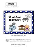 What Goes Together File Folder Game