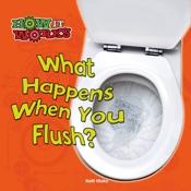 What Happens When You Flush?