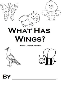 What Has Wings?