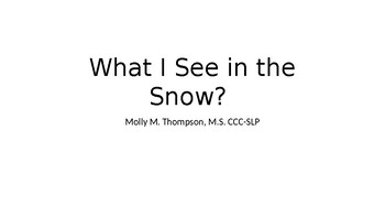 What I See in the Snow