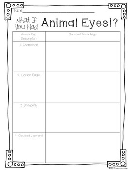 What If You Had Animal Eyes!? Addresses NGSS 3-LS4-2 Animal Adaptations