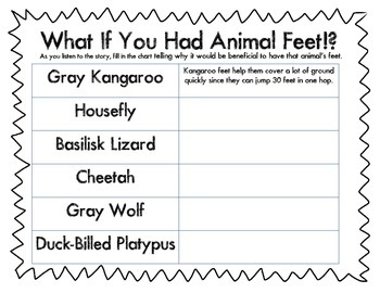 What If You Had Animal Feet!?