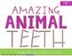 Amazing Animals {BUNDLE Pack}