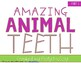 Amazing Animals {BUNDLE Pack}