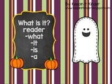 What Is It? Halloween reader