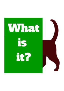 What Is It? emergent reader