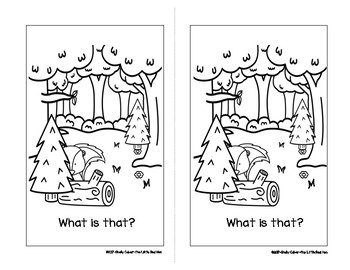 What Is That?-SIGHT WORD Emergent Reader w/worksheets -Focus Words: what is that