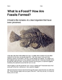 What Is a Fossil? How Are Fossils Formed?