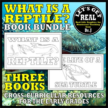 What Is a Reptile? BOOK BUNDLE