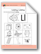 What Is an Insect?: Language and Math Activities
