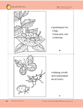 What Is an Insect?: Take-Home Book