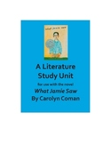 What Jamie Saw Literature Study Unit (editable)