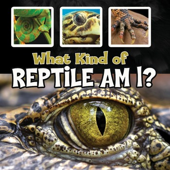 What Kind of Reptile Am I?