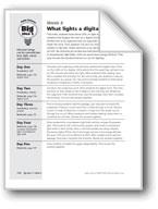 What Lights a Digital Clock?