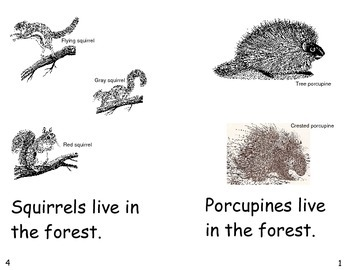 What Lives In The Forest?- a non-fiction guided reading book