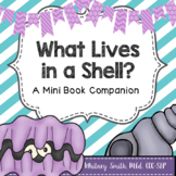 What Lives in a Shell: A Book Companion