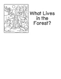 What Lives in the Forest? (read & color)