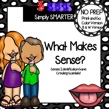 What Makes Sense?:  NO PREP Five Senses Board Game