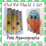 What Pet Should I Get?  Agamographs