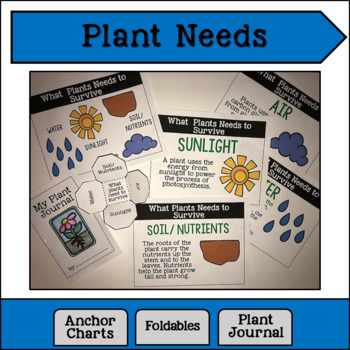 What Plants Need to Grow