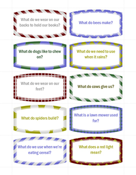 What Question Cards & Picture Match