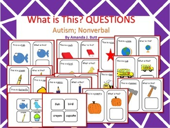 What Questions; Communication; Speech; Autism; Nonverbal; Special Education