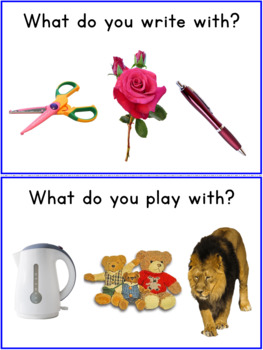 What Questions Worksheets