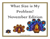 What Size is my Problem: November Edition