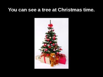 What We Can See at Christmas Time Powerpoint with Audio