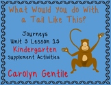 What Would You Do With a Tail Like This? Journeys Unit 3 Lesson 13 Kindergarten
