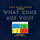 Zones of Regulation - What Zone are you?
