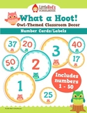 Number Cards Number Labels 1-50 - Owl Theme
