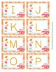 What a Hoot Owl Alphabet Sequencing Flash Cards