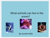 What animals can live in the ocean ?