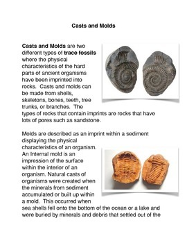 What are Casts and Molds?