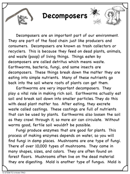 What are Decomposers?   Reading Passage for NGSS 5-LS2-1