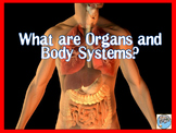 What are Organs and Body Systems PowerPoint and Interactiv