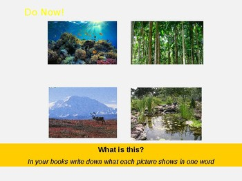 What are ecosystems? Lesson