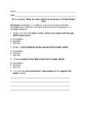 What are some physical structures in living things? Ch. 4 Lesson 1 Quiz