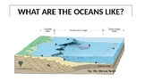 What are the Oceans like?