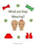 What are they Wearing? Gingerbread Boy & Girl adapted book