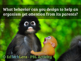 What behavior can you design to help an organism get attention from its parents?