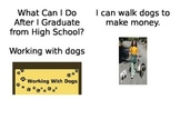 What can I do after High School...Dogs
